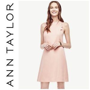 Ann Taylor Scalloped Pink Shift Dress 8